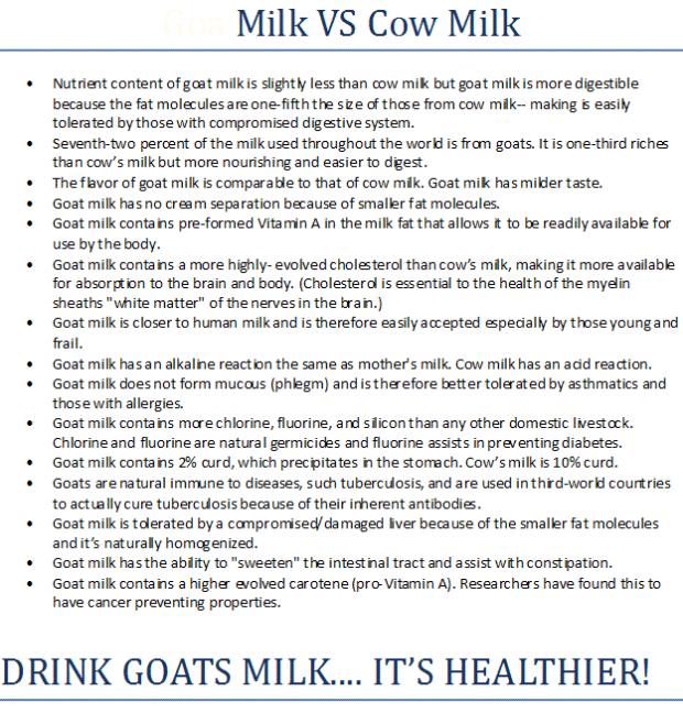milk6